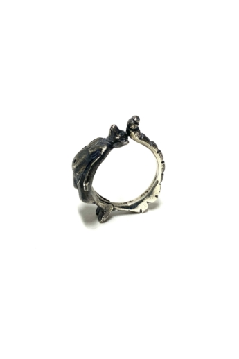 Bajcsi-Nagy Balázs: Gyűrűsfarkú maki gyűrű