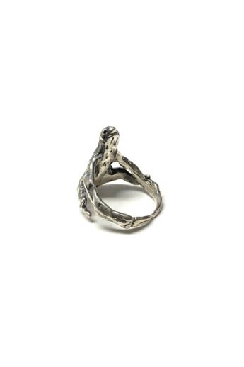 Bajcsi-Nagy Balázs: Lajhár gyűrű