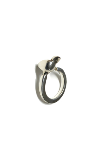 Balázs Marianna: Madaras gyűrű