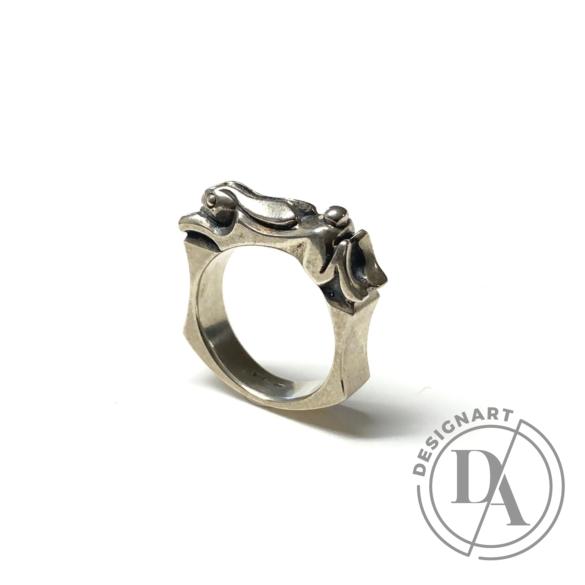 Bajcsi-Nagy Balázs: Nyuszi gyűrű